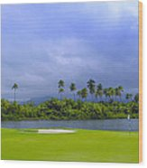 Golfer's Paradise Wood Print by Stephen Anderson