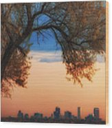 Good Morning Denver Wood Print by Darren  White