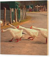 Goose Crossing Wood Print by Michael Pickett
