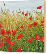 Grain And Poppy Field Wood Print by Elena Elisseeva