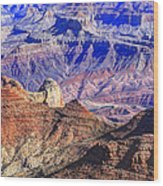 Grand Canyon And The Colorado River Wood Print by James Steele