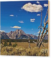 Grand Tenton Overlook Wood Print by Robert Bales