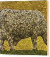 Grazing 2 Wood Print by Jack Zulli
