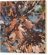 Great Falls Va - 121227 Wood Print by DC Photographer