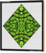 Green Banana Wood Print by Roberto Alamino