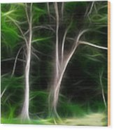 Greenbelt Wood Print by Wendy J St Christopher