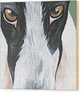 Greyhound Eyes Wood Print by Leslie Manley