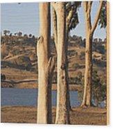 Guardians Of The Lake Wood Print by Linda Lees