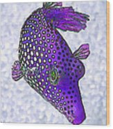 Guinea Fowl Puffer Fish In Purple Wood Print by Bill Caldwell -        ABeautifulSky Photography