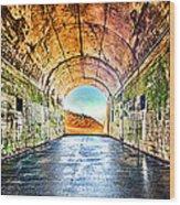 Hawk Hill Tunnel Wood Print by Robert Rus