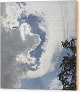 Head In The Clouds Wood Print by Jackie Mestrom