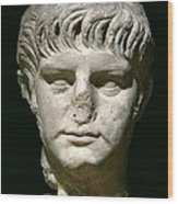 Head Of Nero Wood Print by Anonymous