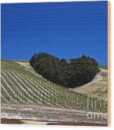 Heart Hill Paso Robles Wood Print by Jason O Watson