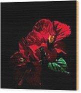 Hibiscus Wood Print by Jacob Sela