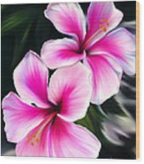 Hibiscuses Wood Print by Laura Bell