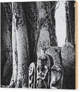 Hindu Shrine Wood Print by Tim Gainey