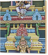 Hindu Temple Deity Statues Wood Print by Tim Gainey
