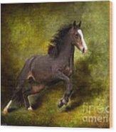 Horse Angel Wood Print by Dorota Kudyba