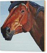 Horse Head Wood Print by Mike Jory