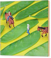 Horse Riding On Snow Peas Little People On Food Wood Print by Paul Ge