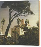 Hotel California- La Jolla Wood Print by Steve Karol