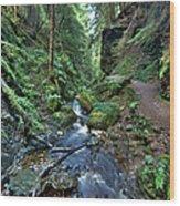 How Green Is My Glen Wood Print by Gary Eason