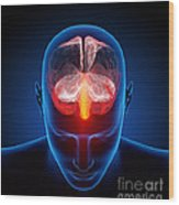 Human Brain Wood Print by Johan Swanepoel