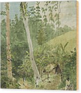 Hut In The Jungle Circa 1816 Wood Print by Aged Pixel