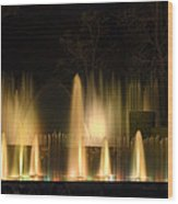 Illuminated Dancing Fountains Wood Print by Sally Weigand