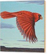 In Flight Wood Print by James W Johnson