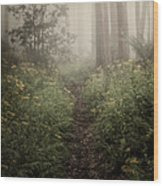 In Silence Wood Print by Amy Weiss