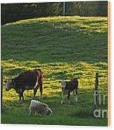 In The Field Wood Print by Randi Shenkman