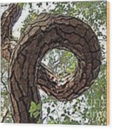 In The Spiral Of Life Always Reach For The Sky Wood Print by Kenny Sampson