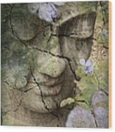 Inner Tranquility Wood Print by Christopher Beikmann