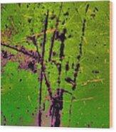 Intermingle Wood Print by Tom Druin