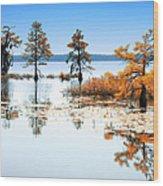 Isle Of Peace - North Carolina Wood Print by Dan Carmichael