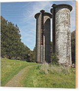 Jack London Ranch Silos 5d22162 Wood Print by Wingsdomain Art and Photography