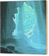 Jamaica Blue Wood Print by Carey Chen