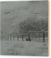 January Storm Wood Print by Kathy Jennings