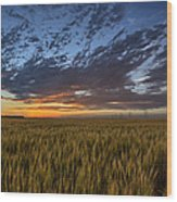 Kansas Color Wood Print by Thomas Zimmerman