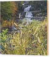 Kent Falls Wood Print by Bill Wakeley