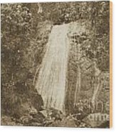 La Coca Falls El Yunque National Rainforest Puerto Rico Print Vintage Wood Print by Shawn O'Brien