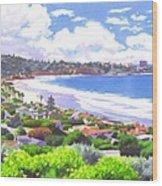 La Jolla California Wood Print by Mary Helmreich