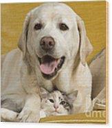 Labrador With Cat Wood Print by Jean-Michel Labat