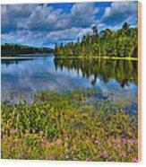 Lake Abanakee At Indian Lake New York Wood Print by David Patterson
