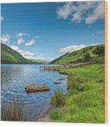 Lake In Wales Wood Print by Adrian Evans