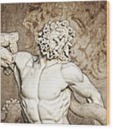 Laocoon Wood Print by Joe Winkler