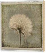 Large Dandelion Wood Print by Linda Olsen