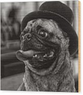 Last Call Pug Greeting Card Wood Print by Edward Fielding