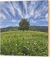 Last Tree Wood Print by Debra and Dave Vanderlaan